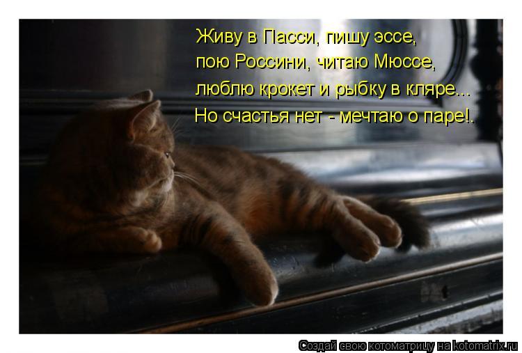 Котоматрица: Живу в Пасси, пишу эссе, пою Россини, читаю Мюссе, люблю крокет и рыбку в кляре... Но счастья нет - мечтаю о паре!.