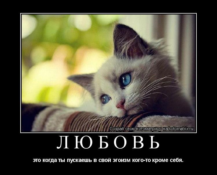 http://kotomatrix.ru/images/lolz/2009/02/26/9l.jpg