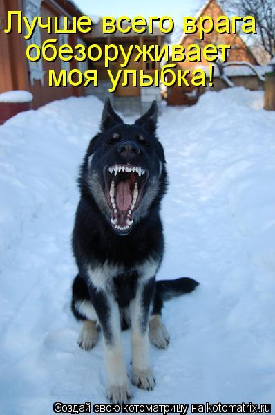 Котоматрица: Лучше всего врага  обезоруживает моя улыбка!
