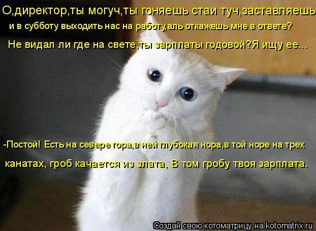 http://kotomatrix.ru/images/lolz/2009/02/26/TR.jpg
