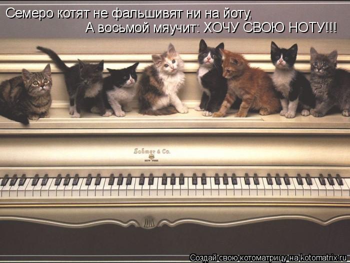 Котоматрица: Семеро котят не фальшивят ни на йоту, А восьмой мяучит: ХОЧУ СВОЮ НОТУ!!!