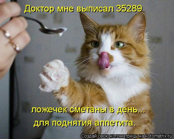 Котоматрица: Доктор мне выписал 35289 ложечек сметаны в день... для поднятия аппетита.
