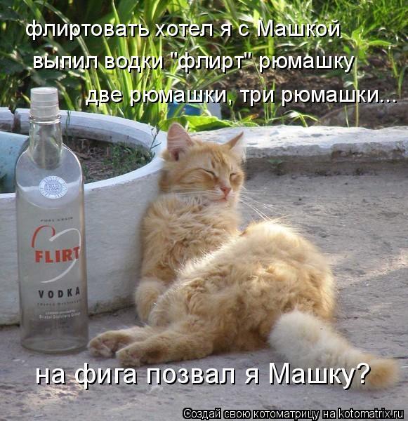 "Котоматрица: флиртовать хотел я с Машкой выпил водки ""флирт"" рюмашку две рюмашки, три рюмашки... на фига позвал я Машку?"