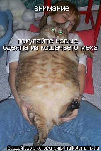 Котоматрица: внимание  покупайте новые одеяла из кошачьего меха
