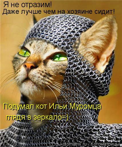 Котоматрица: Я не отразим! Подумал кот Ильи Муромца глядя в зеркало=) Даже лучше чем на хозяине сидит!