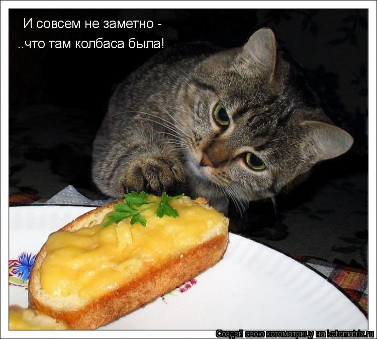 Котоматрица: И совсем не заметно - ..что там колбаса была!