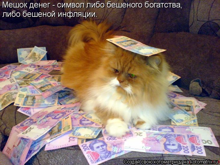 Котоматрица: Мешок денег - символ либо бешеного богатства, либо бешеной инфляции.