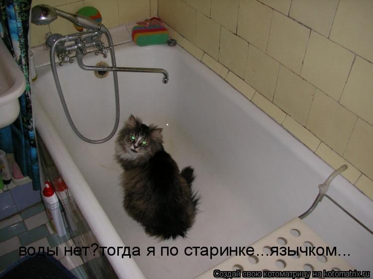 Котоматрица: воды нет?тогда я по старинке...язычком...