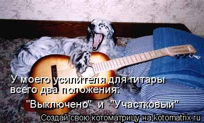 """Котоматрица: У моего усилителя для гитары всего два положения: """"Выключено""""  и  """"Участковый"""""""