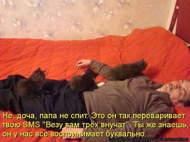"""Котоматрица: Не, доча, папа не спит. Это он так переваривает  твою SMS """"Везу вам трёх внучат"""". Ты же знаешь,  он у нас всё воспринимает буквально..."""