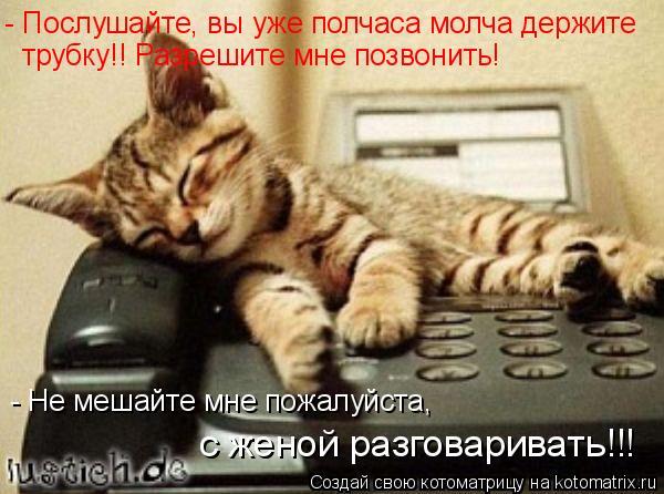 Котоматрица: - Послушайте, вы уже полчаса молча держите  трубку!! Разрешите мне позвонить! - Не мешайте мне пожалуйста, с женой разговаривать!!!