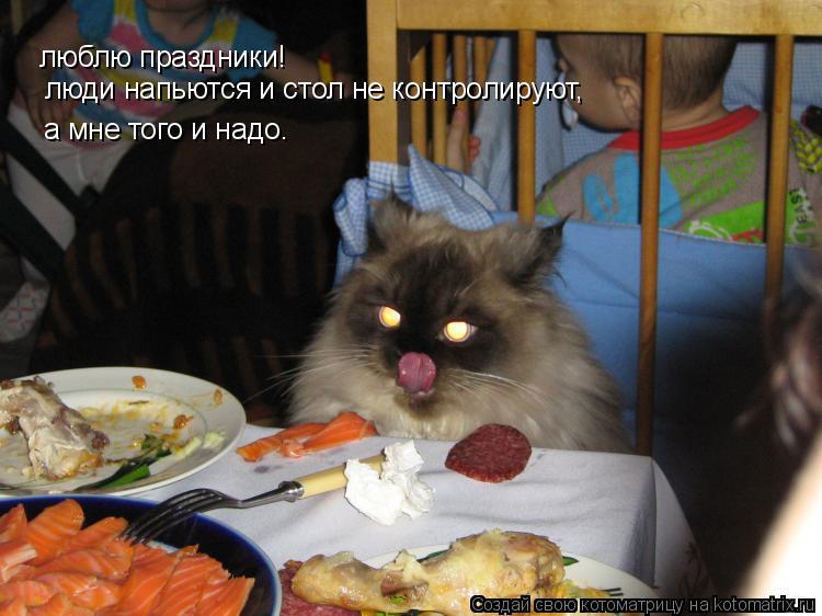 Котоматрица: люблю праздники! люди напьются и стол не контролируют, а мне того и надо.