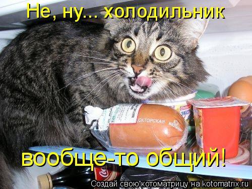 Котоматрица: Не, ну... холодильник  вообще-то общий!