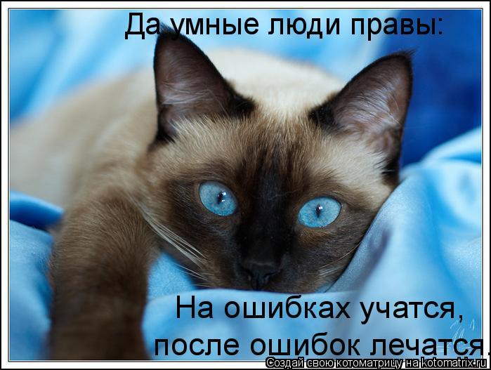 Котоматрица: Да умные люди правы:  На ошибках учатся,  после ошибок лечатся.