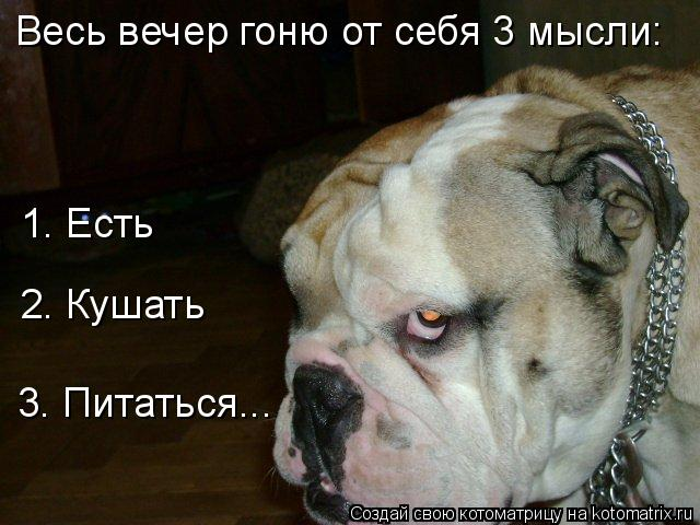 http://kotomatrix.ru/images/lolz/2009/03/03/TC.jpg
