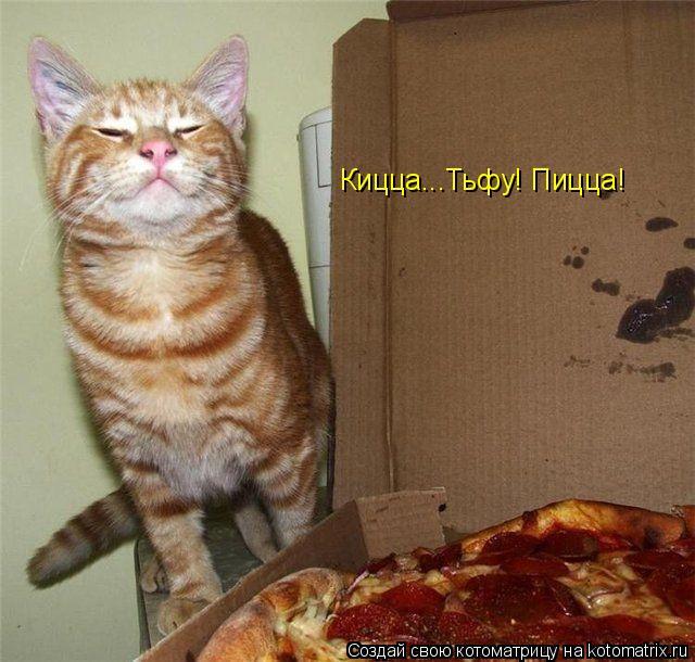 Котоматрица: Кицца...Тьфу! Пицца!