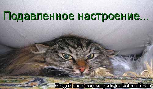 Котоматрица: Подавленное настроение...