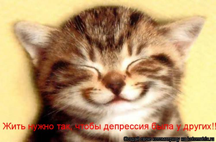 Котоматрица: Жить нужно так, чтобы депрессия была у других!!