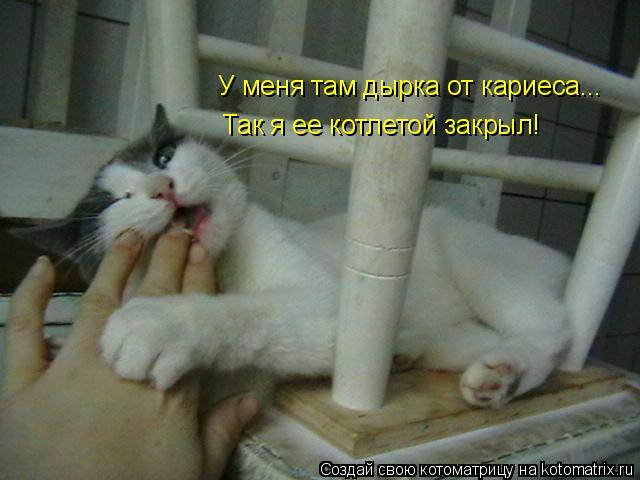 Котоматрица: У меня там дырка от кариеса... Так я ее котлетой закрыл!