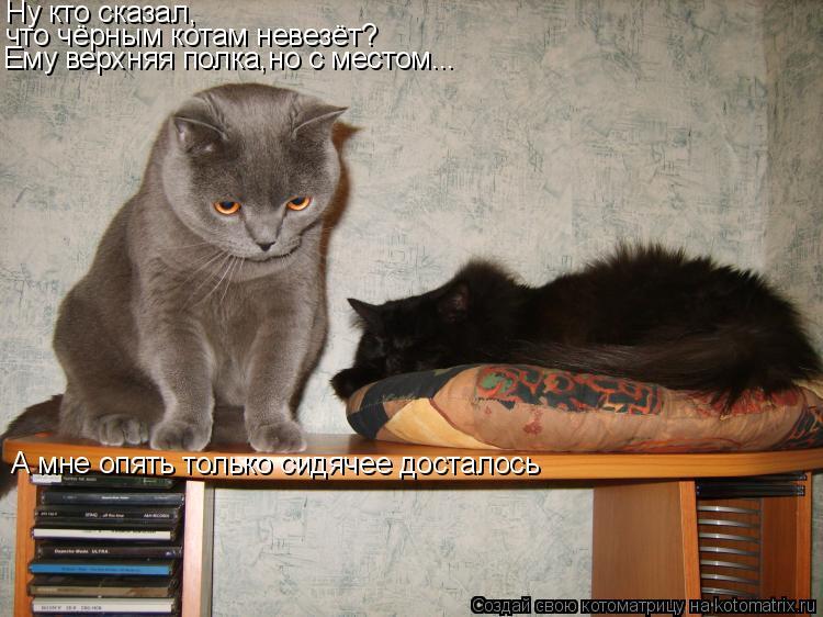 Котоматрица: Ну кто сказал, что чёрным котам невезёт? Ему верхняя полка,но с местом... А мне опять только сидячее досталось