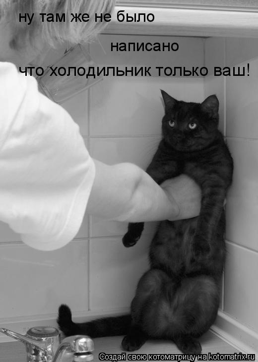 Котоматрица: ну там же не было написано что холодильник только ваш!