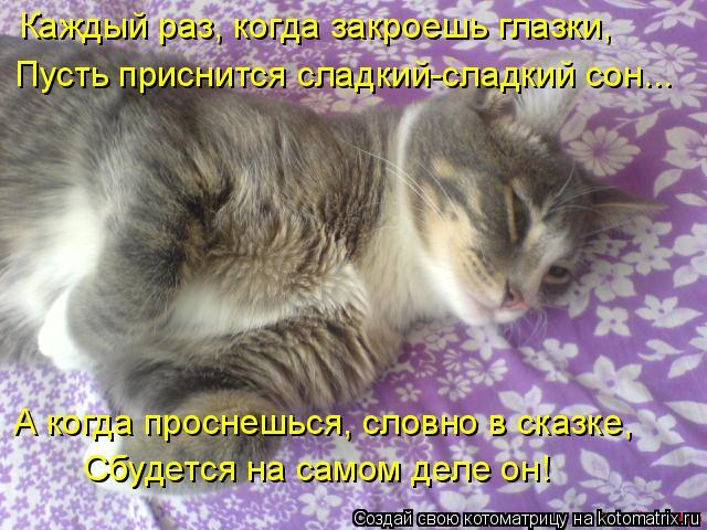Котоматрица: А когда проснешься, словно в сказке, Сбудется на самом деле он! Каждый раз, когда закроешь глазки, Пусть приснится сладкий-сладкий сон...