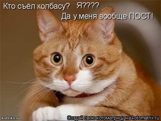 Котоматрица: Кто съёл колбасу? Да у меня вообще ПОСТ! Я????