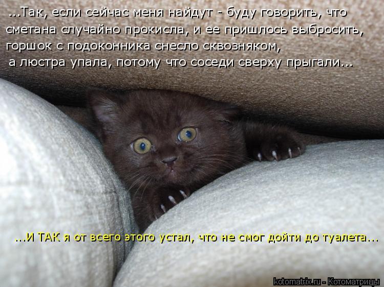 http://kotomatrix.ru/images/lolz/2009/03/06/qO.jpg