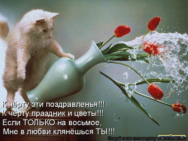 Котоматрица: К чёрту Ваши поздравленья!!! Мне в любви клянёшься ТЫ!!! Если ТОЛЬКО на восьмое, К чёрту праздник и цветы!!! К чёрту эти поздравленья!!!