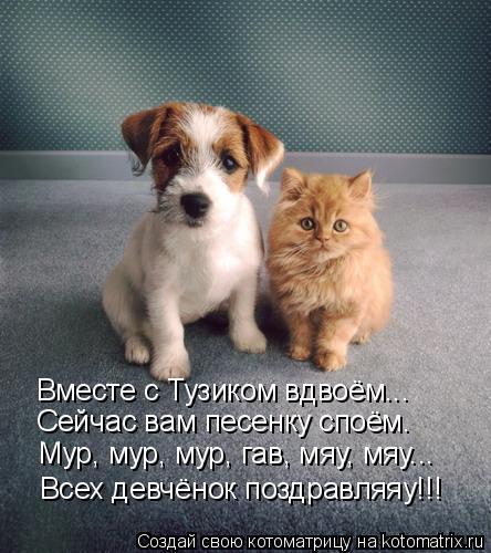 Котоматрица: Вместе с Тузиком вдвоём... Сейчас вам песенку споём. Мур, мур, мур, гав, мяу, мяу... Всех девчёнок поздравляяу!!!