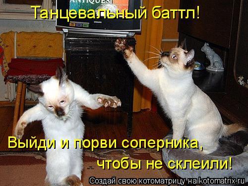 Котоматрица: Танцевальный баттл!  Выйди и порви соперника,  чтобы не склеили!