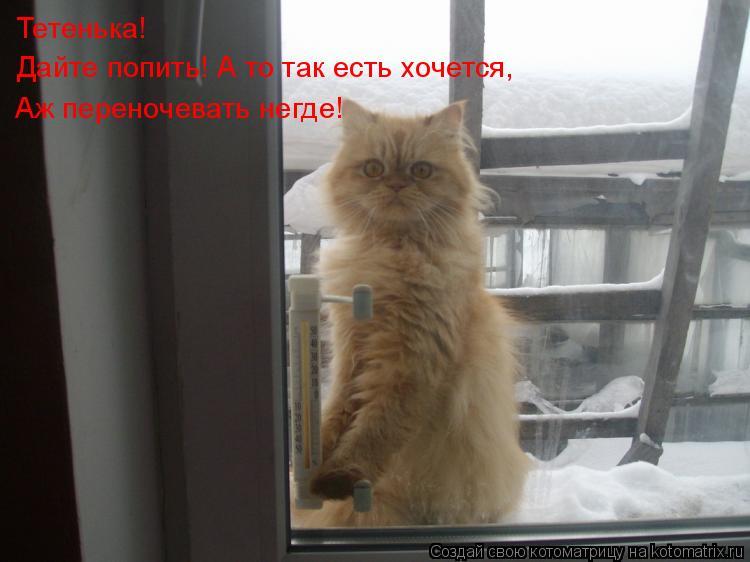 Тетя дала смотреть онлайн 21 фотография