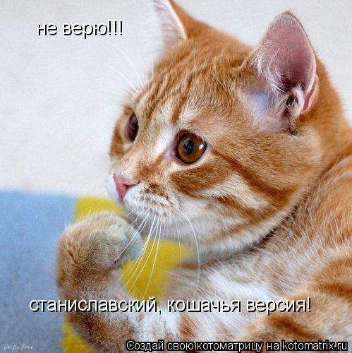 Котоматрица: не верю!!! станиславский, кошачья версия!