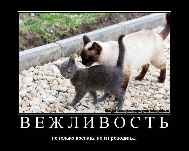 http://kotomatrix.ru/images/lolz/2009/03/09/J3.jpg