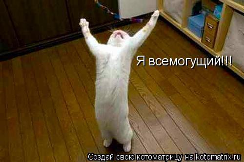 Котоматрица: Я всемогущий!!!