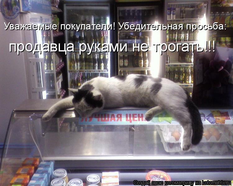 Котоматрица: Уважаемые покупатели! Убедительная просьба: продавца руками не трогать!!!