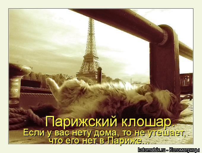 Котоматрица: Парижский клошар. Если у вас нету дома, то не утешает, что его нет в Париже...