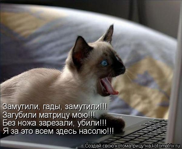 Котоматрица: Замутили, гады, замутили!!! Загубили матрицу мою!!! Без ножа зарезали, убили!!! Я за это всем здесь насолю!!!