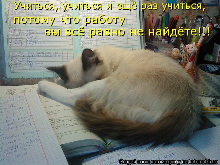 Котоматрица: Учиться, учиться и ещё раз учиться,  потому что работу  вы всё равно не найдёте!!!