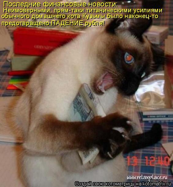 Котоматрица: Последние финансовые новости:  Неимоверными, прям-таки титаническими усилиями обычного домашнего кота Кузьмы было наконец-то предотвраще