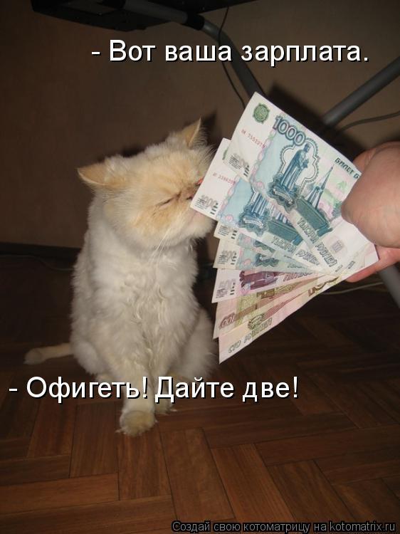 Котоматрица: - Вот ваша зарплата… - Офигеть! Дайте две!