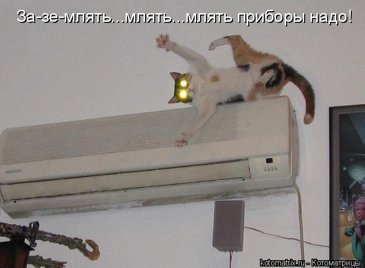 Котоматрица: За-зе-млять...млять...млять приборы надо!