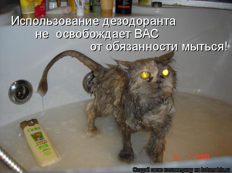 Котоматрица: Использование дезодоранта не  освобождает ВАС  от обязанности мыться!