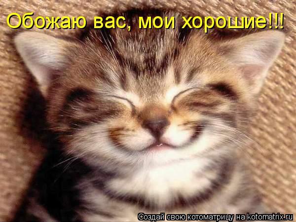 http://kotomatrix.ru/images/lolz/2009/03/11/VU.jpg