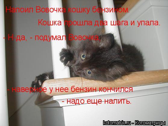 Котоматрица: Напоил Вовочка кошку бензином.  Кошка прошла два шага и упала.    - Н-да, - подумал Вовочка,  - наверное у нее бензин кончился  - надо еще налить.