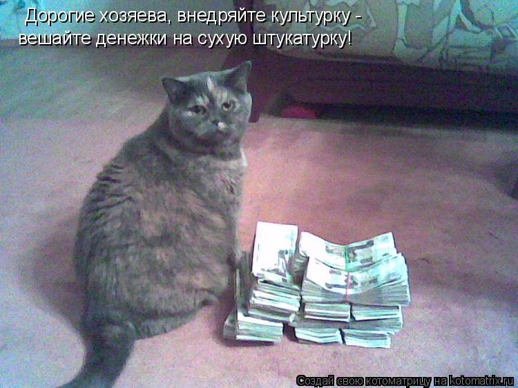 Котоматрица: Дорогие хозяева, внедряйте культурку - вешайте денежки на сухую штукатурку!