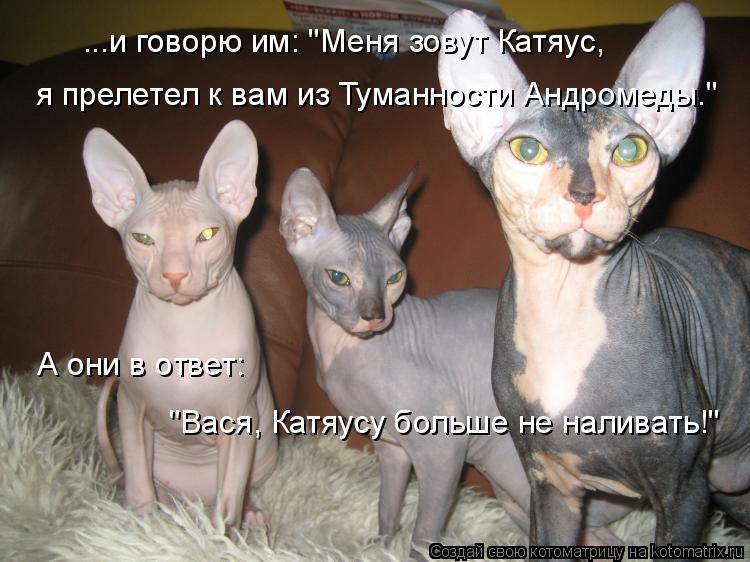 """Котоматрица: я прелетел к вам из Туманности Андромеды."""" ...и говорю им: """"Меня зовут Катяус, А они в ответ:  """"Вася, Катяусу больше не наливать!"""""""