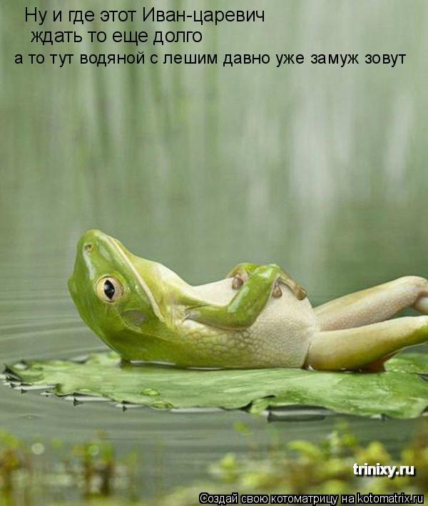 Котоматрица: Ну и где этот Иван-царевич ждать то еще долго а то тут водяной с лешим давно уже замуж зовут