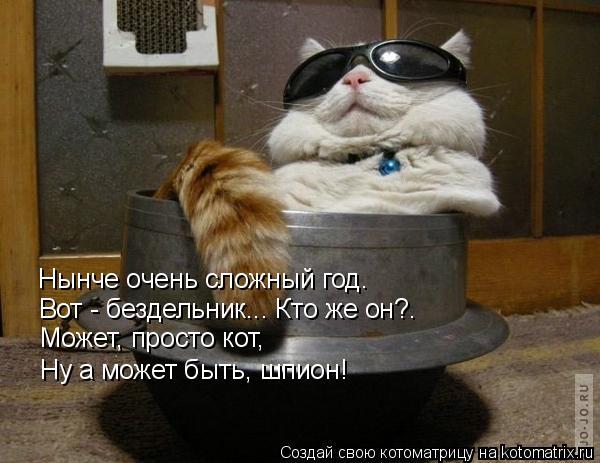 Котоматрица: Нынче очень сложный год. Вот - бездельник... Кто же он?. Может, просто кот, Ну а может быть, шпион!