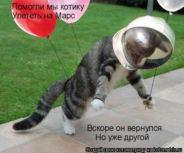 Котоматрица: Помогли мы котику Улететь на Марс Вскоре он вернулся Но уже другой